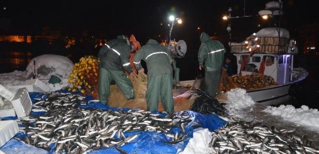 Sinop'ta Balıkçıların Yüzü Güldü